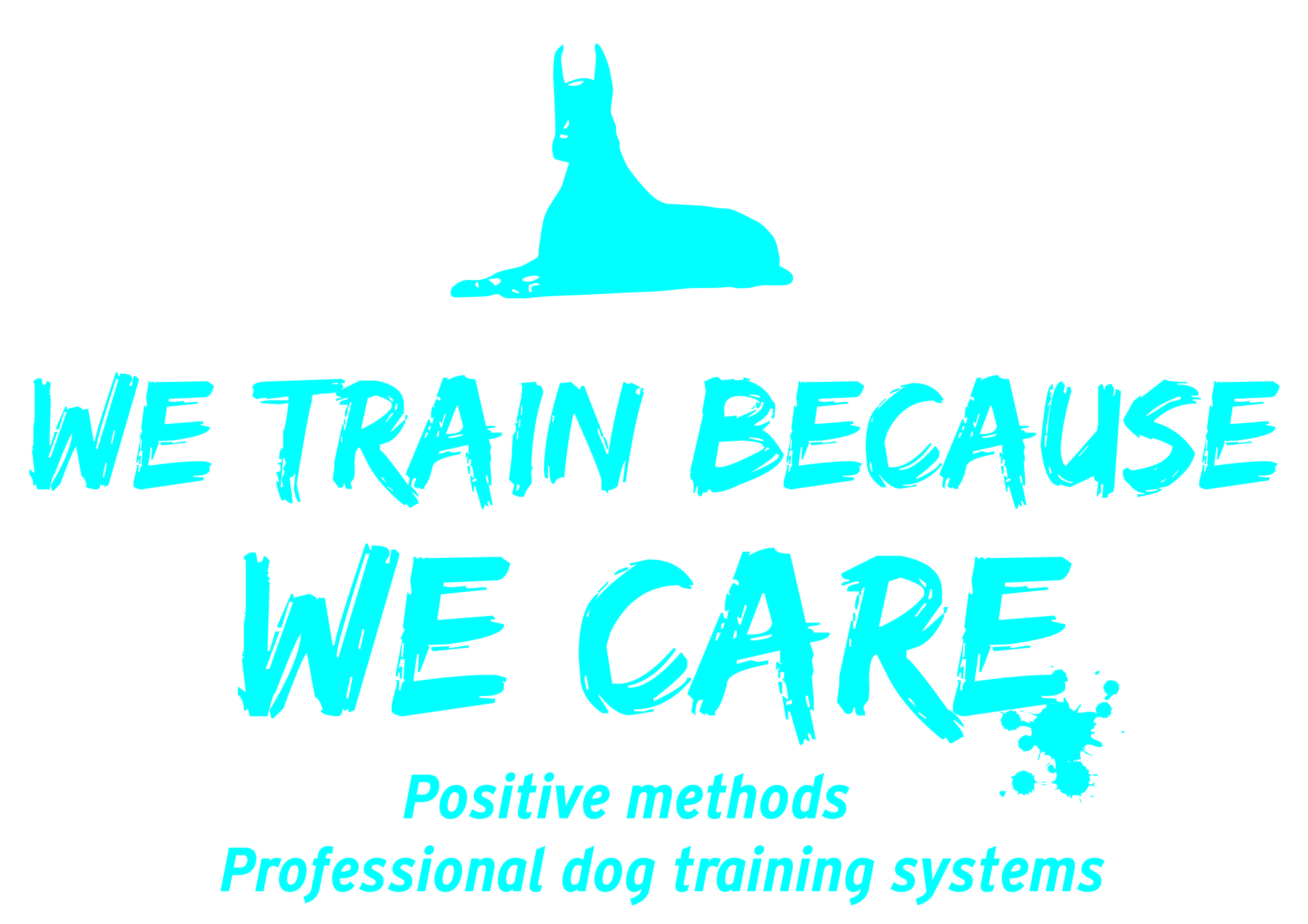 We train because we Care
